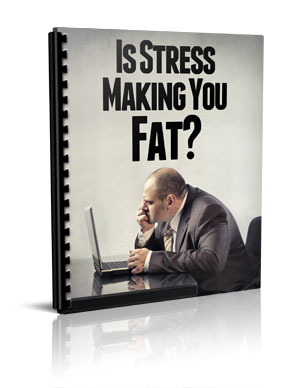 stress and fat